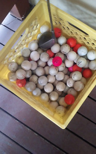 200 golf balls for 50 cents a ball or all for 100 and driver