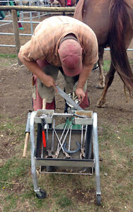 Farrier & Equine Services