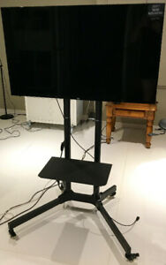 """VDG - TV HD LG LED 43"""" avec stand sur roulettes pour projection"""