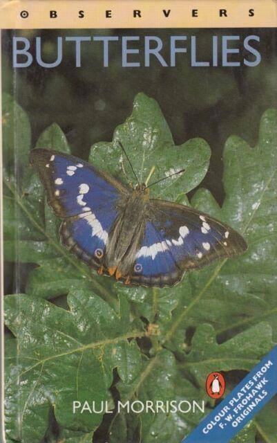 Observers Butterflies : Paul Morrison