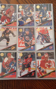 série complete de cartes de hockey Leaf 93-94 Patrick Roy