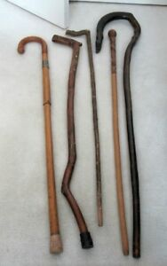FIVE COLLECTABLE CANES