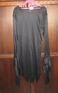 Witch dress in size 10/12 Kingston Kingston Area image 1