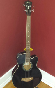 Electric Acoustic Bass