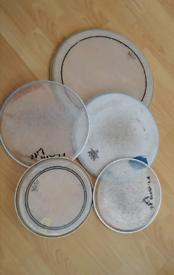 Remo, Evans, Tama, Mapex drum skins Head's