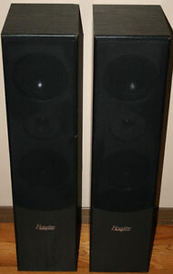 Braxton E1004 Tower Speakers