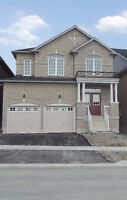 Detached 4 bedroom house in newmarket for rent