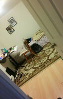 One room available at Cheap cost