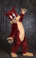 Danny Dingo and Roxy Raccoon - Mascot Characters