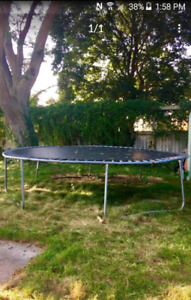 Trampoline need gone asap pls no room