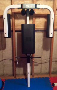 """NORTHERN LIGHTS PECK FLY ATTACHMENT with 2x45 lbs 2"""" plates"""