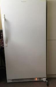 Congélateur vertical 17.1 PC