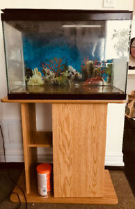10 Gallon Aquarium with Stones, Lights, Filter, & Stand