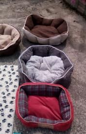 Assorted pet beds x 5