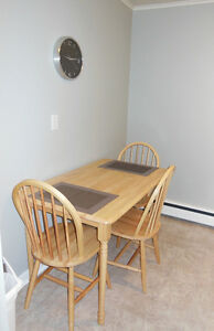 Comfortable 1 bedroom apartment St. John's Newfoundland image 3