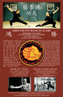 Martial Arts: Choy Lee Fut Kung Fu Classes