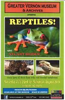 Reptiles Presentation