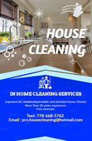 Pro House Cleaning from $25