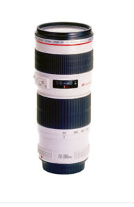 70-200 mm Canon Lens f/4 L USM with hood and case