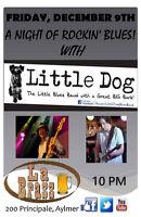 Little Dog @ La Brass Aylmer