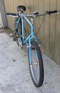 """1985 Raleigh Bighorn 58cm XL 23"""" Vintage Bike 12 Speed Stratford Kitchener Area image 3"""