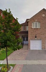 Thornhill Woods 1 bedroom basement apartment