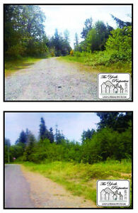5 Acre Building Lots - three in total !