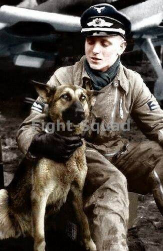 WW2 Picture Photo Erich Hartmann most successful ace 352 kills and his dog 3435