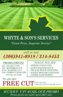 Lawn care and yardworks