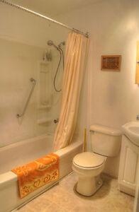 Main Level Beautiful 1bedroom Apartment! Jan 1st or Feb 1st Kitchener / Waterloo Kitchener Area image 11
