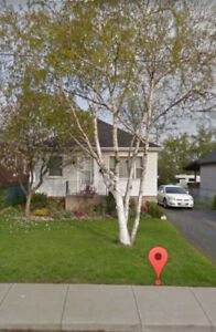 3BR Bungalow- centrally located to Beach, QEW and Downtown