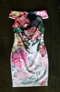 Ted Baker Dress Size 2 Brand New Without Tag