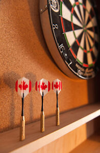 Dart Board Cabinets Cambridge Kitchener Area image 7