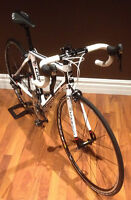 2013 Cannondale Synapse Carbon - Full Ultegra