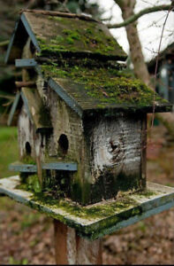 Wanted: Old Birdhouses