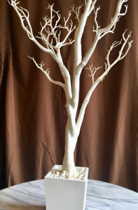 RENT WHITE MANZANITA TREES 4ft for Wedding Sweet 16 Debut Decor