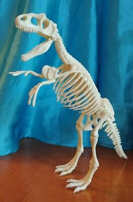T-Rex Skeleton Dinosaur Paleontology Action Figure Desk Top Jurassic Model - T Rex Model