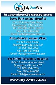 AFFORDABLE VETERINARIAN WITH MULTIPLE LOCATIONS