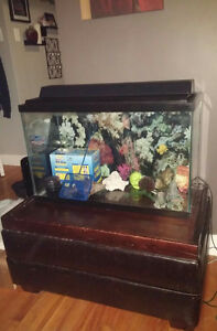 Beautiful 29 Gallon Fish Tank With Filter, Stand & Accessories