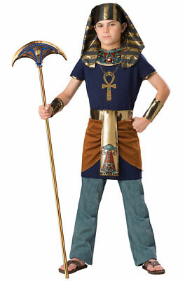 Brand New Egyptian King Pharaoh Child Halloween Costume](Child King Costume)