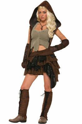 Medieval Rogue Renaissance Warrior Adult Costume