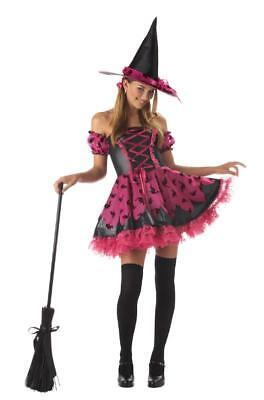 Teen Hip Pretty Potion Witch Halloween Costume