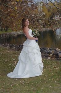 Size 10-12 corset ivory dress and veil