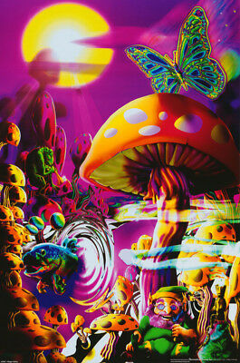 POSTER : MARIJUANA THEME:PSYCHEDELIC:  MAGIC VALLEY - FREE SHIP!  #3397   LP35 W