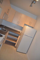 SPACIOUS UPDATED 1 BR APPT  Arlington, Near Portage and U of W