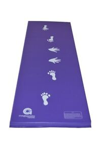 Cartwheel, Tumbling Martial Arts Folding Mat (Pink/Purple/Blue)