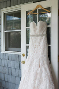 Allure Lace Champagne & Ivory Wedding Dress