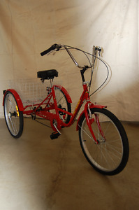 Belize Tri-Rider Tricycle