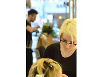 Hairdressing Apprentices and Junior trainees