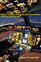 Flight Training School-Become Commercial Pilot Highly Paid